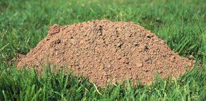 Mound Of Dirt
