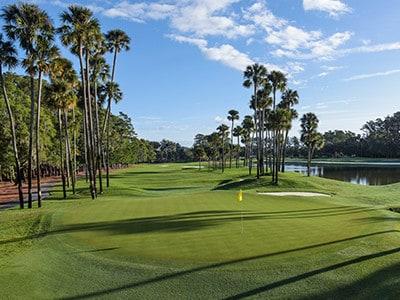 longest golf drive
